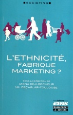 book-ethnicite-fabrique-marketing